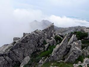 Korsika Alta Rocca